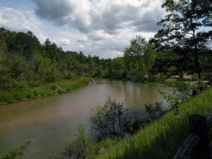 ThePine River