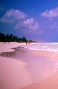 Pink Sands, The Bahamas