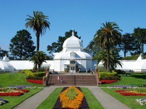 the Golden Gate Park