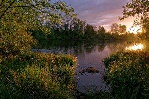 "Natural Park ""Whitaker Ponds"""