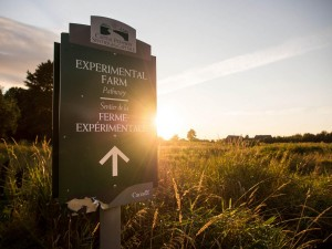 The Central Experimental Farm Canada