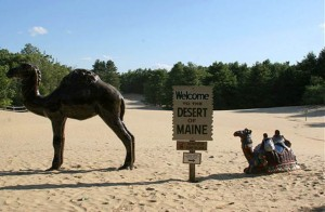 The Desert of Maine