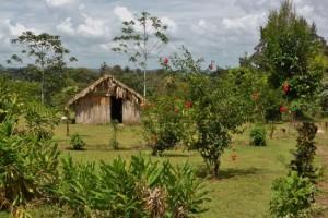 Maleku Village